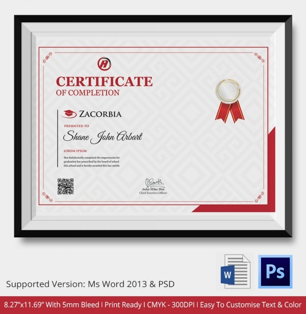 Professional Certificate Template for Individuals