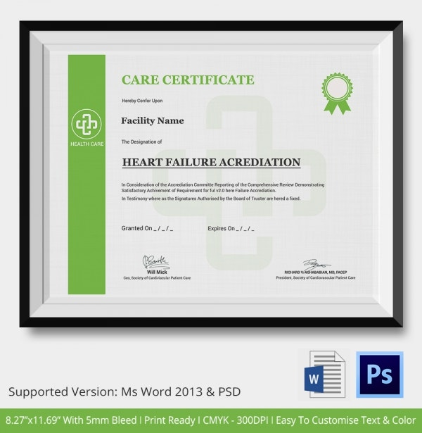 Professional Care Certificate Template