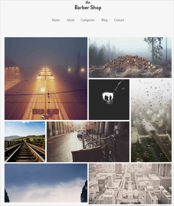 Social Media Portfolio WordPress Website Theme $29