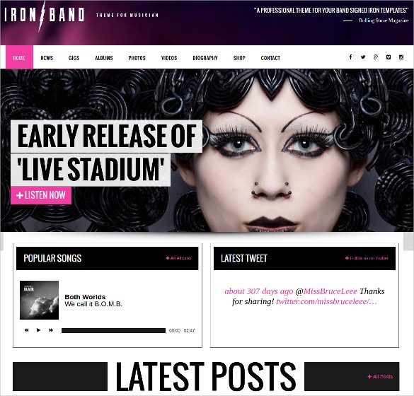 Music Band & DJ Social Media WordPress Website Theme $59