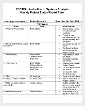 Weekly Project Update Report Template