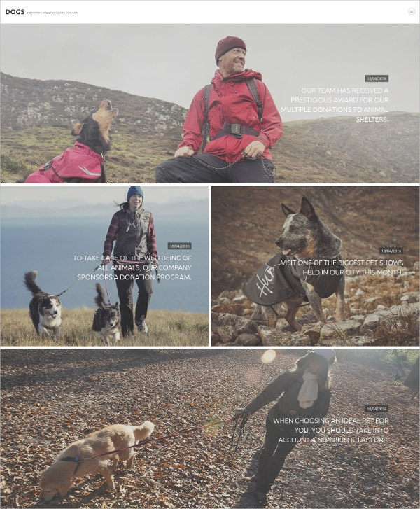 Dogs Joomla HTML5 Template