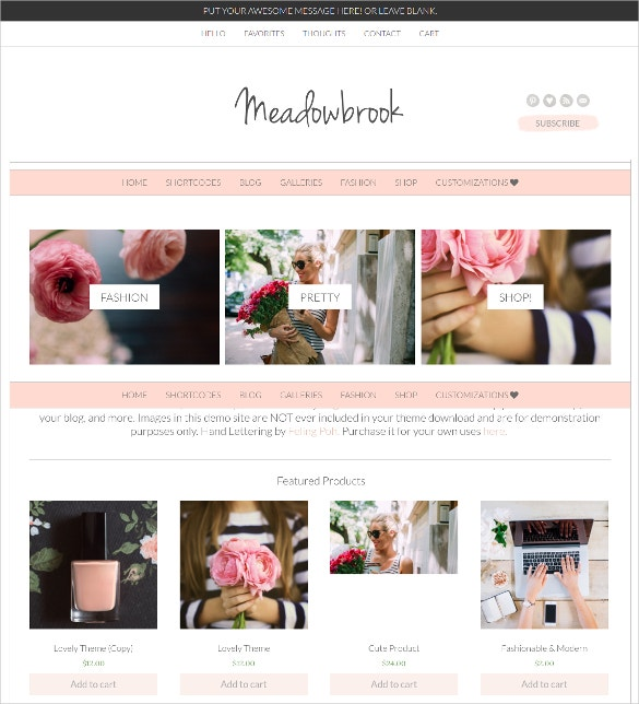 Stunning Boutique WordPress Website Theme $70