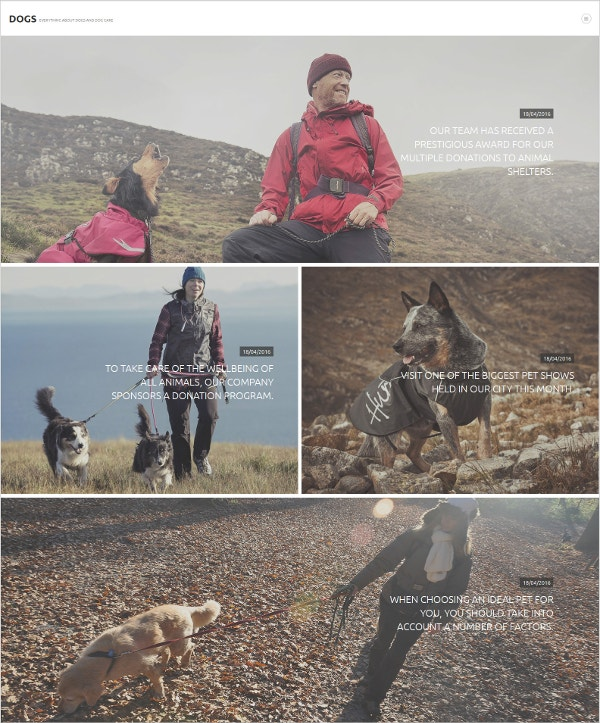 Pet Animal Joomla Template