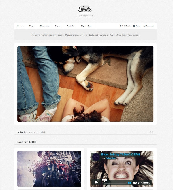 Designer Photo Folio Website Theme $44