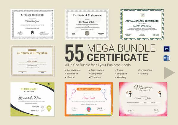 professional-certificate-bundle-template