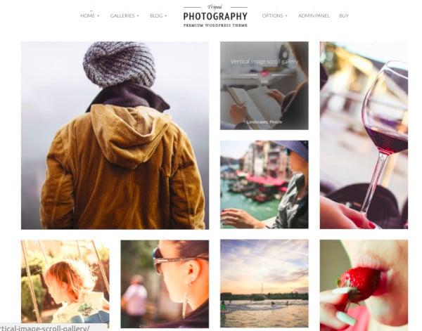 professional-wordpress-photography-theme