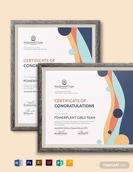 team certificate1