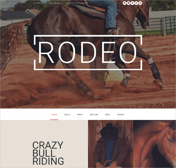 Horse Responsive Moto CMS 3 Bootstrap Website Template $199