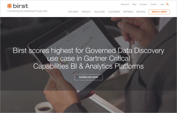 Birst Predictive Analytics