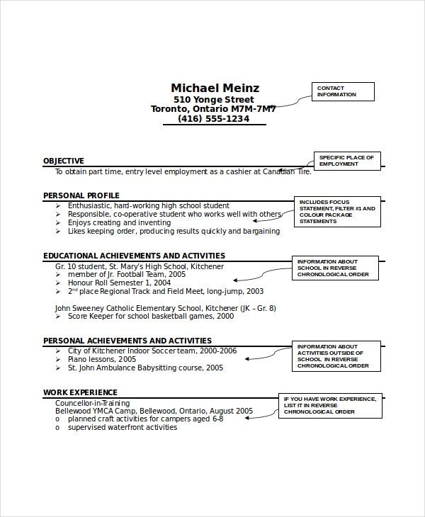 Professional Sample Babysitter Resume