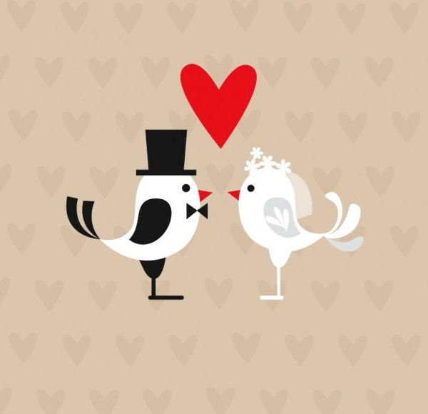Wedding Birds Best Background