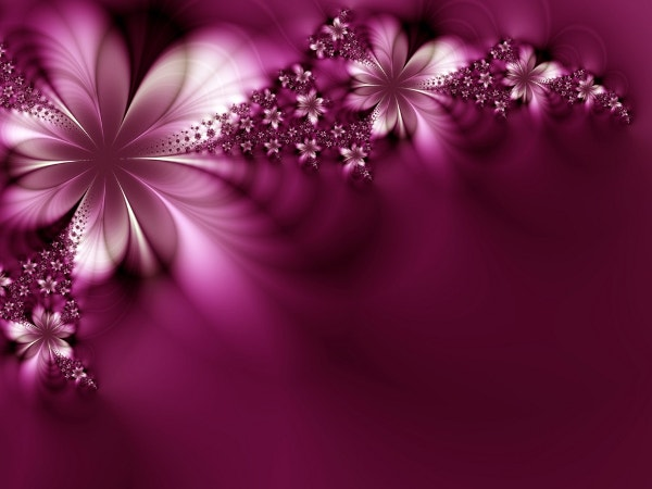 Flower Design Wedding Background for Desktop