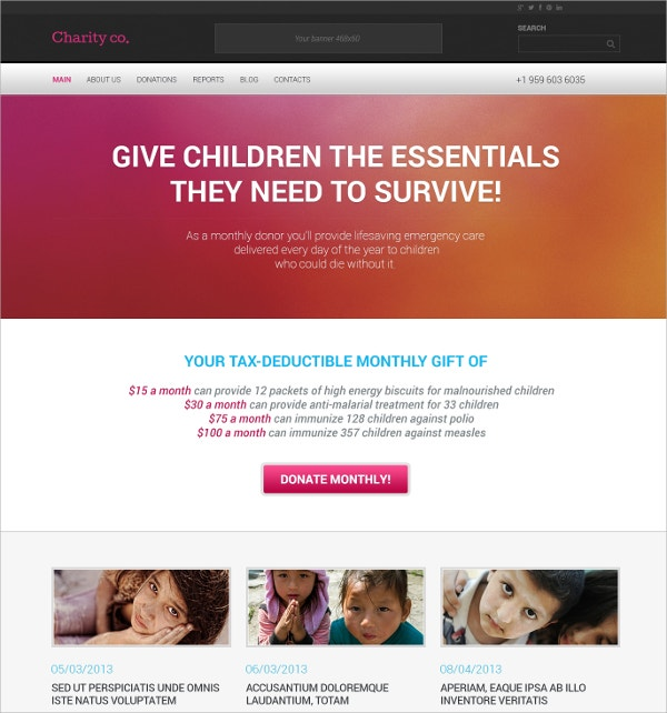 Simple Charity WordPress Theme $75