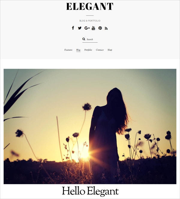 simple elegant wordpress theme