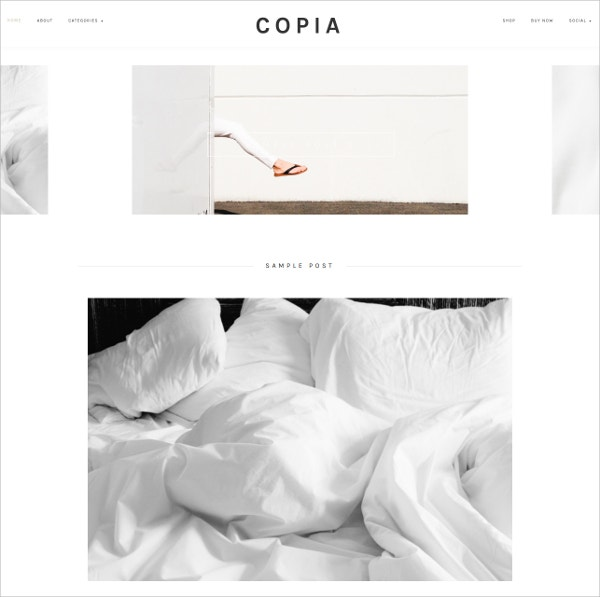 minimalist modern wordpress theme 40