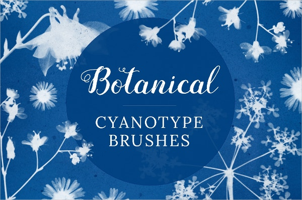 Botanical Cyanotype Petal Brushes