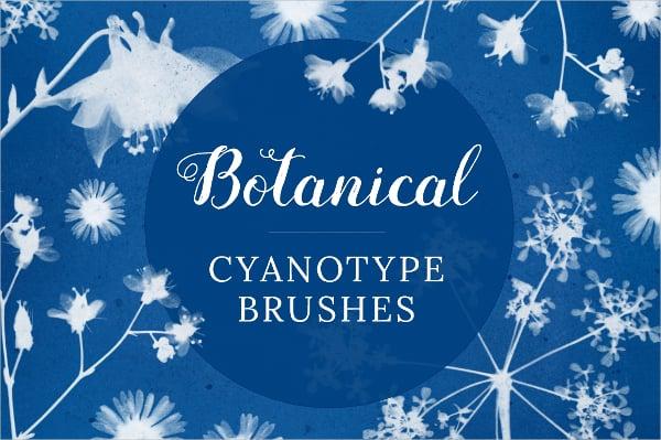 botanical cyanotype petal brushes