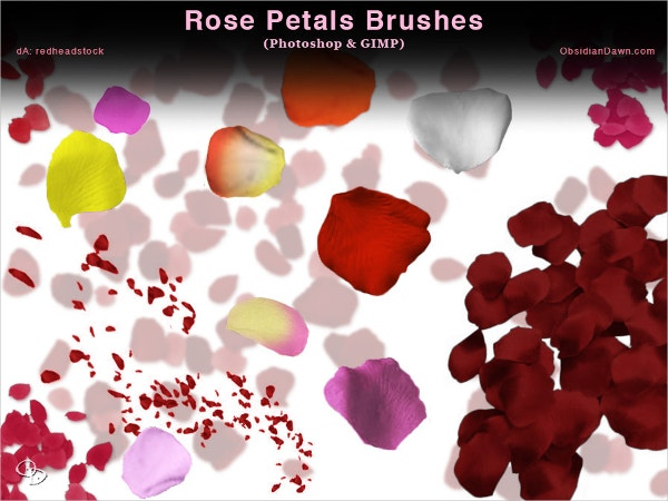 Rose Petal Photoshop and GIMP Brushes