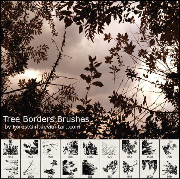 Tree Borders Brushes