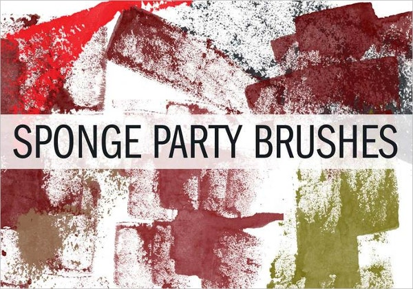 Sponge Party Brush Pack