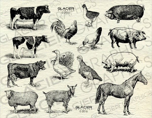 vintage animals vector