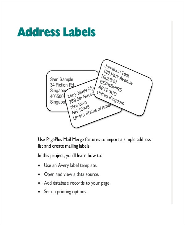 Address Label Template Free Shipping Label Template Free Shipping