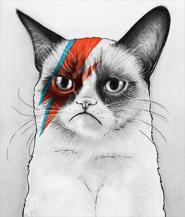 Grumpy Cat As David Bowie