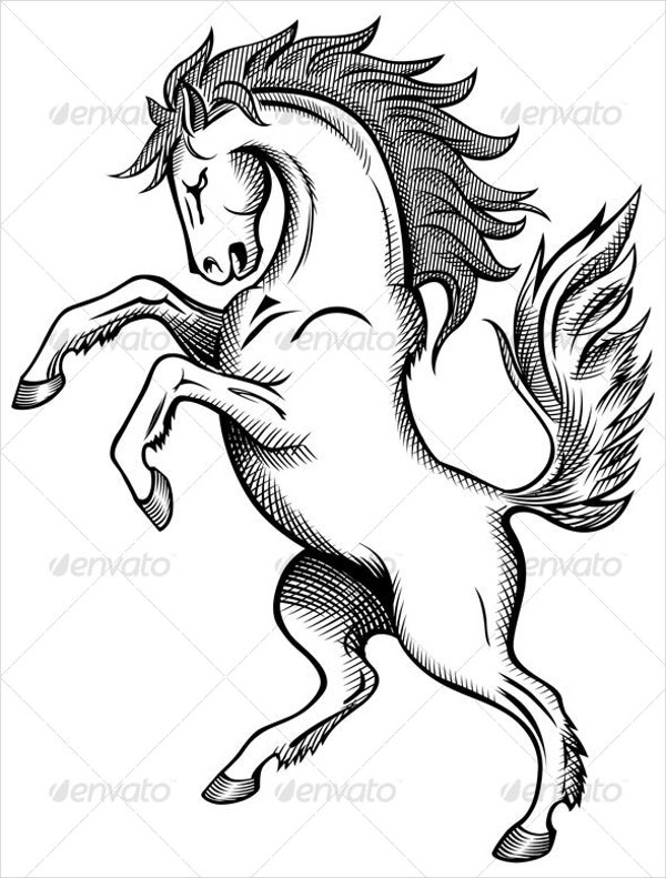 western horse drawing