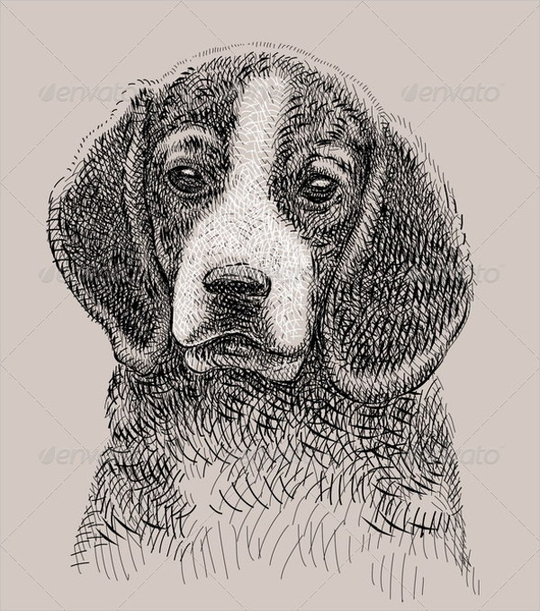 Artistic Dog Drawing