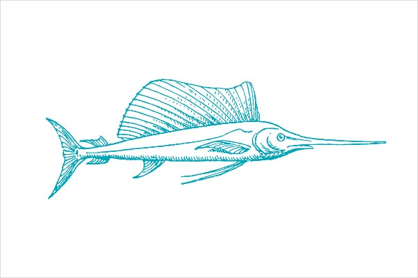 Swordfish Pen Drawing