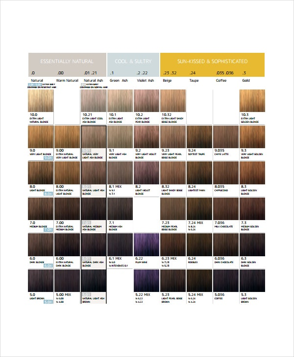 Hair Color Chart Template 9 Free Word Pdf Documents Download