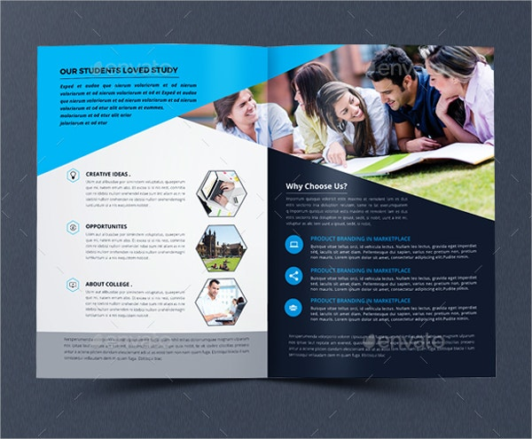 Education Bi-fold Brochure