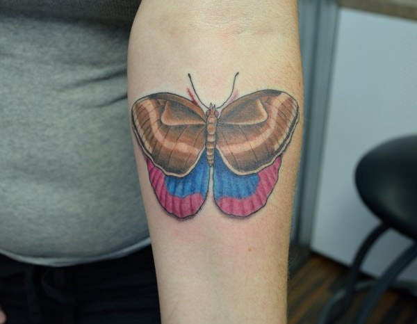 Two Colors Butterfly Tattoo