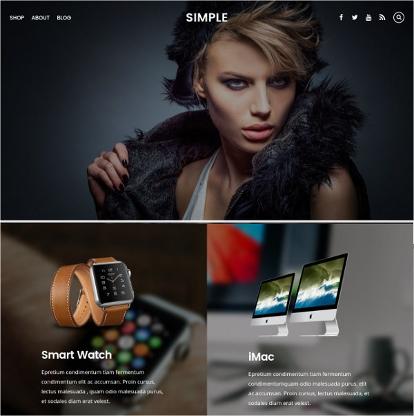 simple free ecommerce wordpress website theme