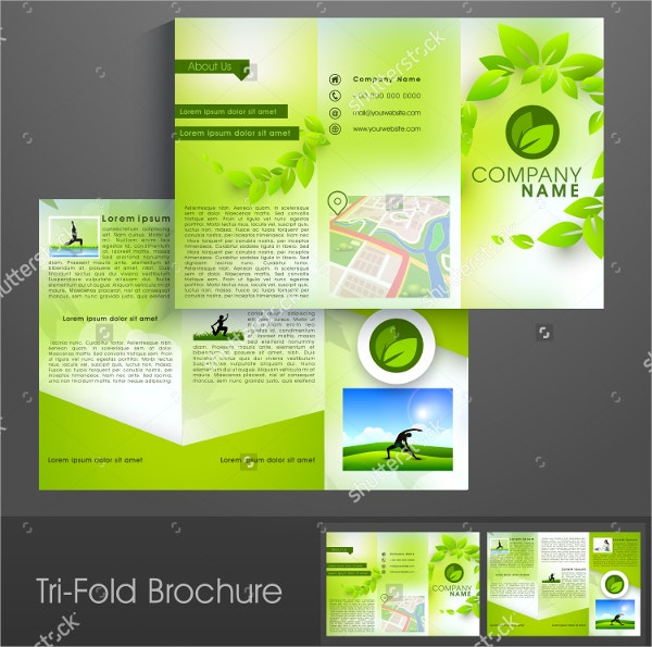 Ecology Yoga Brochure Template