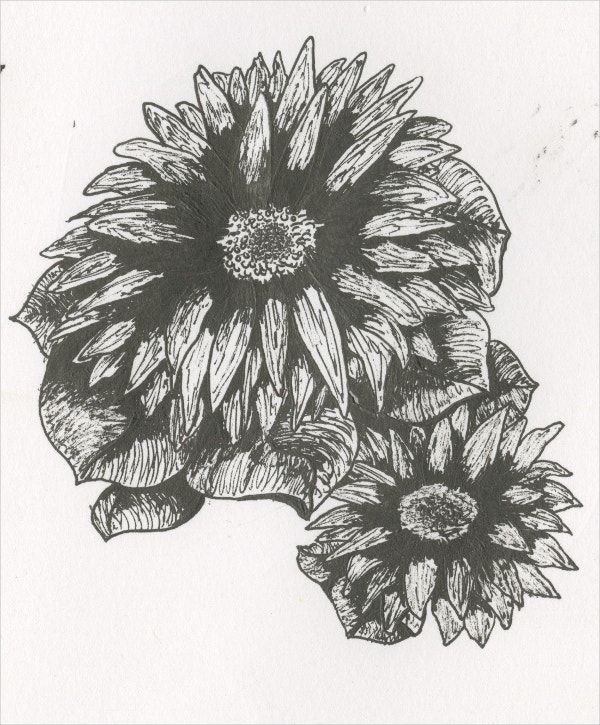 Elegant Ink Flower Drawing