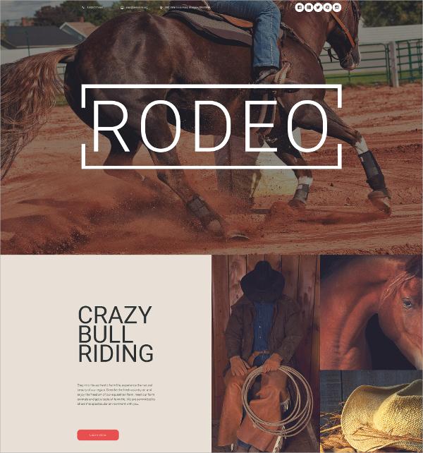 Horse Responsive Moto CMS 3 Website Template $199