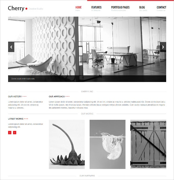 Business Portfolio WordPress Theme $49