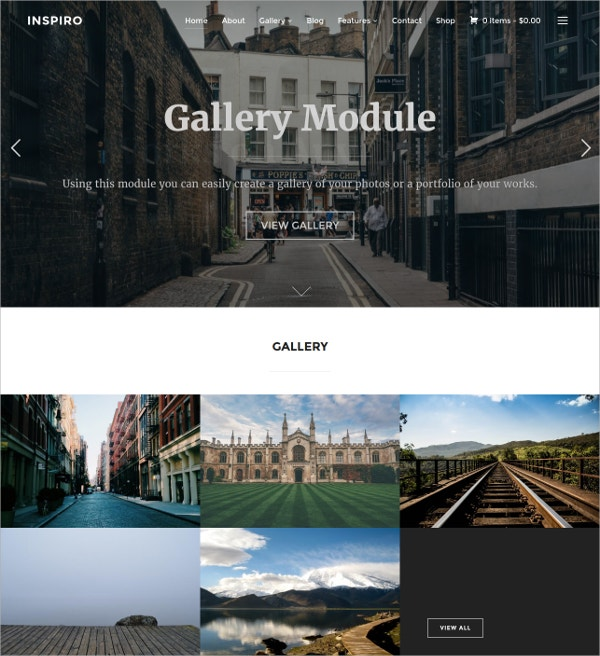 Professional Photographer WordPress Website Theme $69