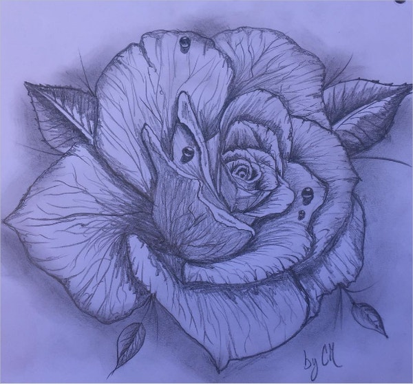 Ink style Rose Drawing