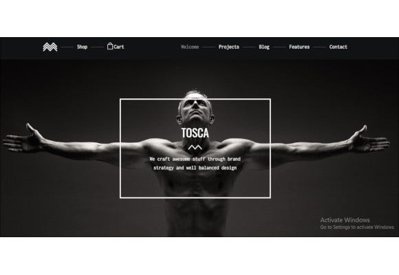 product-portfolio-ecommerce-wordpress-theme