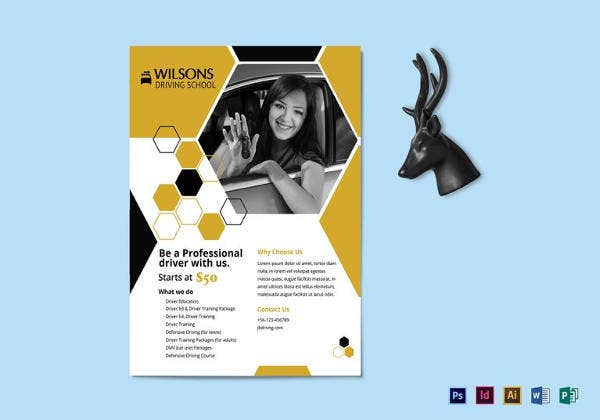 professional-driving-school-flyer-template