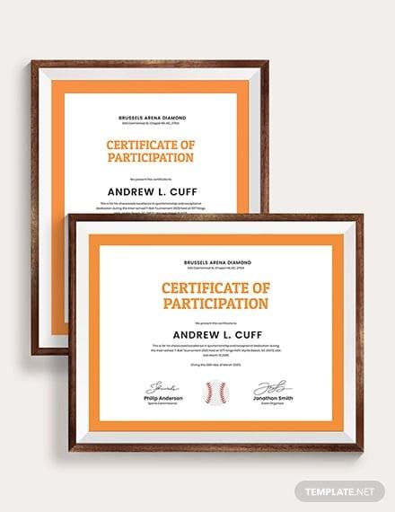 t ball certificate