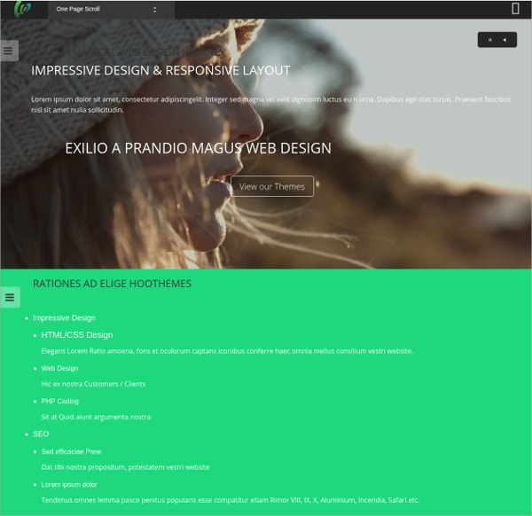 One Page Scroll WordPress Website Theme