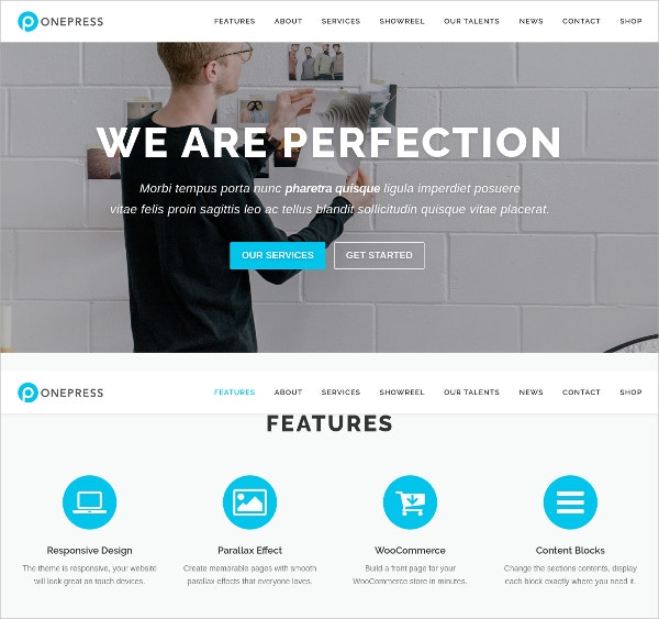 Business, Portfolio, Digital Agency Single Page WordPress Website Theme