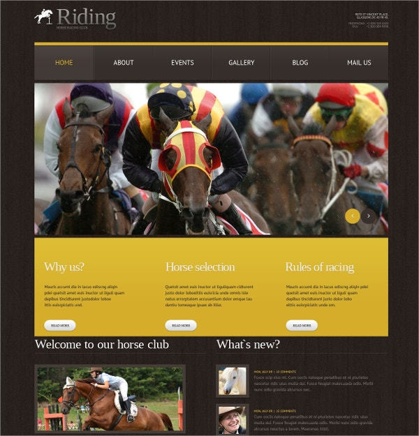 Horse Riding Sports WordPress Theme $75