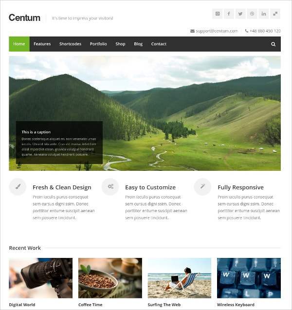 Responsive Minimal WordPress Theme $44