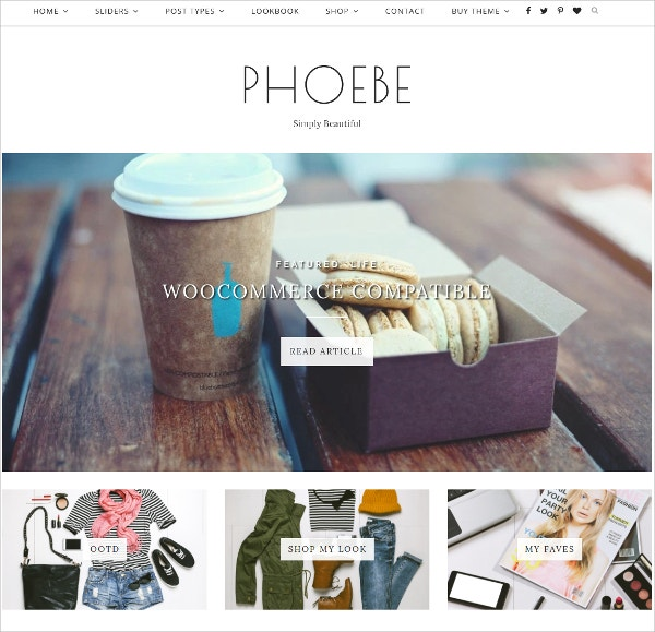 WordPress Theme Responsive eCommerce $35