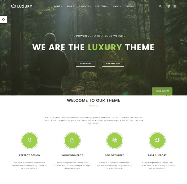 Responsive Portfolio WordPress Theme $59